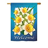 Cheap Breeze Decor FL-H-104070-IP Daffodils House Flag, 28″ x 40″, Multicolor