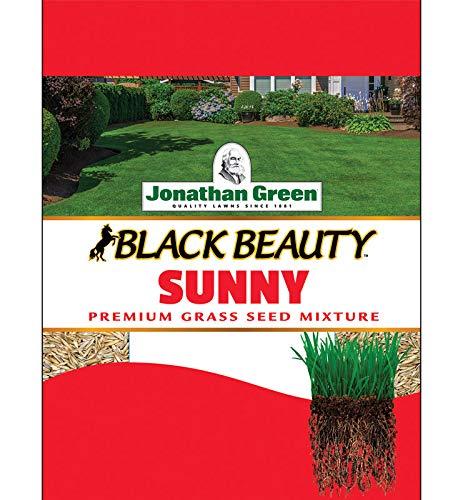 Jonathan Green 10880 Full Sun Grass Seed Mix, 7 Pounds by Jonathan Green