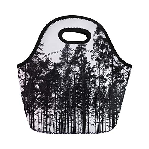 (Semtomn Lunch Tote Bag Dark Pine Trees Forest Black Silhouette Landscape Nature White Reusable Neoprene Insulated Thermal Outdoor Picnic Lunchbox for Men Women)