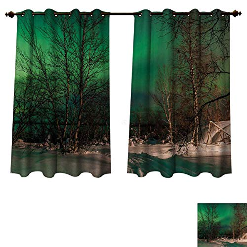 Anzhouqux Northern Lights Blackout Thermal Curtain Panel Snowy Frozen Road Path Between Leafless Trees Finland Park Patterned Drape for Glass Door Jade Green Brown White W55 x L72 inch ()