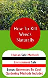 Weed-killers-for-lawns Review and Comparison