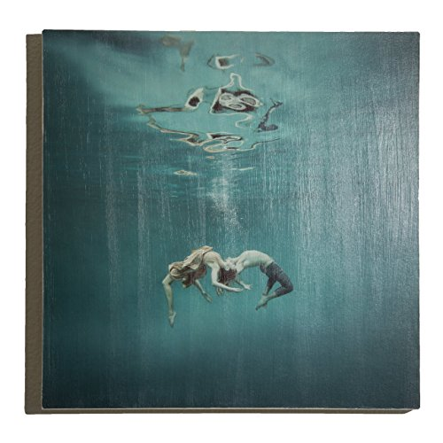 ''Embracing'' Underwater Photography on Wood Panel by Mallory Morrison Photography