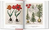 A Garden Eden: Masterpieces of Botanical Illustration (Multilingual Edition)
