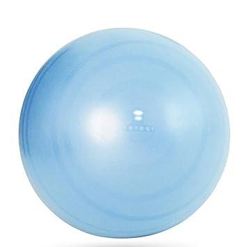 Wly&Home Exercise Ball - Aptitud De Yoga Profesional Contra ...