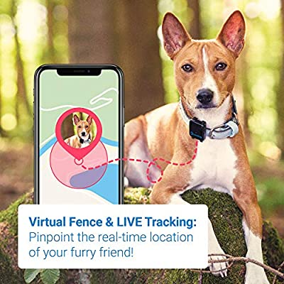 Tractive 3G Dog GPS Tracker  Lightweight and Waterproof Dog Tracking Device and pet Finder with