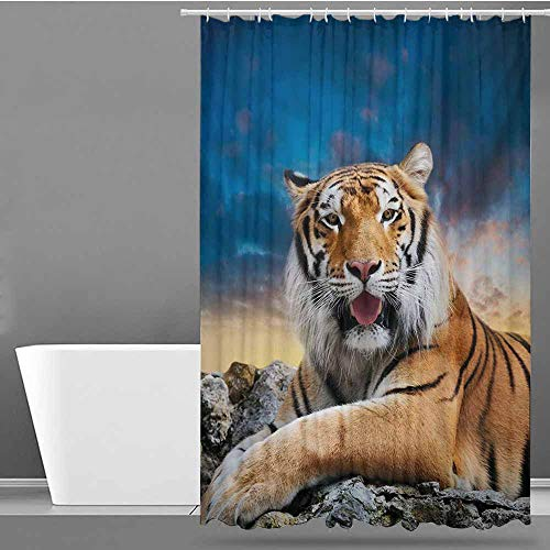 Tim1Beve Long Shower Curtain,Tiger Calm Siberian Large Cat with Beautiful Sunset Resting on a Boulder Relaxed Beast,Bathroom Decoration,W94x72L,Multicolor