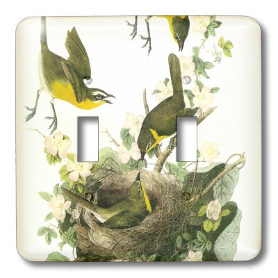 3dRose lsp/_151965/_2  Birds with Nest Feeding Vintage Art Double Toggle Switch