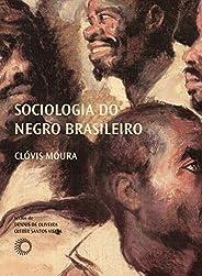 Sociologia do negro brasileiro (Palavras Negras)