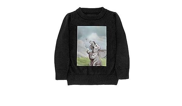 DTMN7 Elephant Grass Flying Sky Teens Sweater Long Sleeves Crew-Neck Youth Athletic Casual Tee Junior Boys