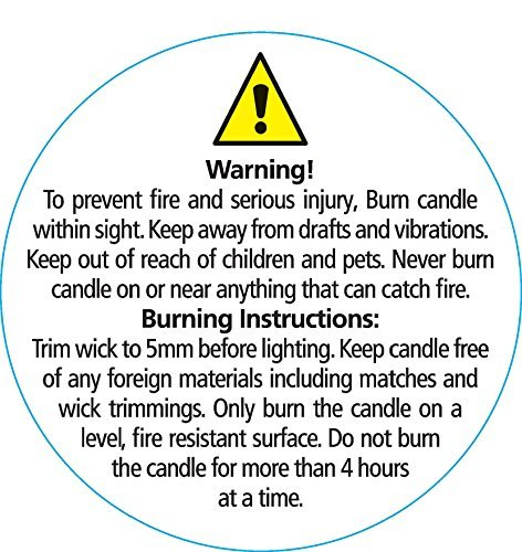 Insane image in free printable candle warning labels