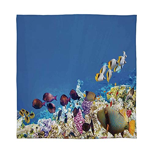 (ALUONI Ultra-Soft Flannel Blanket,Ocean,for Bed Couch Chair,Size Throw/Twin/Queen/King,Fish Schools Swimming Submerged Ancient Coral Reefs)