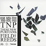 Field of Reeds By These New Puritans (2013-06-10)