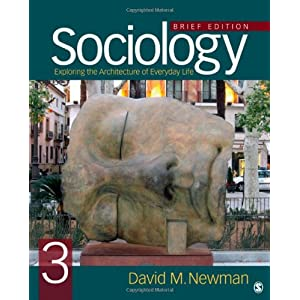 Sociology: Exploring the Architecture of Everyday Life, Brief Edition (Paperback)