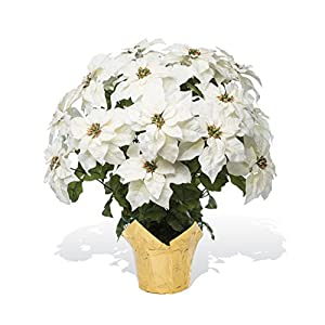 PETALS – Extra Large Premier Silk Poinsettia – Handcrafted – Amazingly Lifelike – 34 x 26 Inches (White)