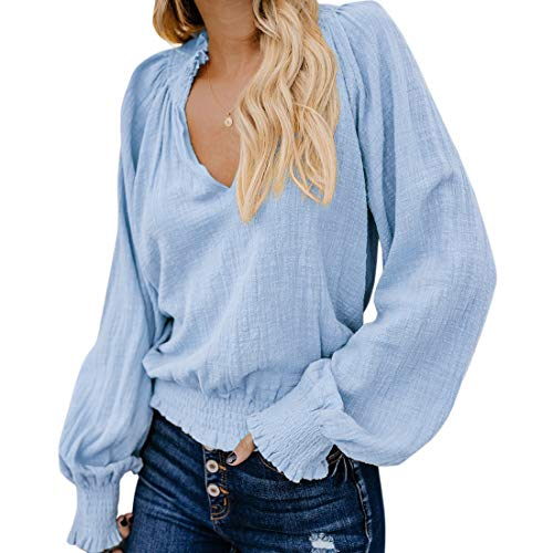 RXRXCOCO Womens V-Neck Casual Tops Smocked Peasant Blouse Lantern Long Sleeve Loose Shirts Blue 2X-Large