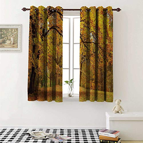 shenglv Forest Decor Curtains by Warm Fall Scenery with Pale Maple Leaves in The Forest November Season Woodlands Curtains Girls Bedroom W63 x L63 Inch Orange Brown