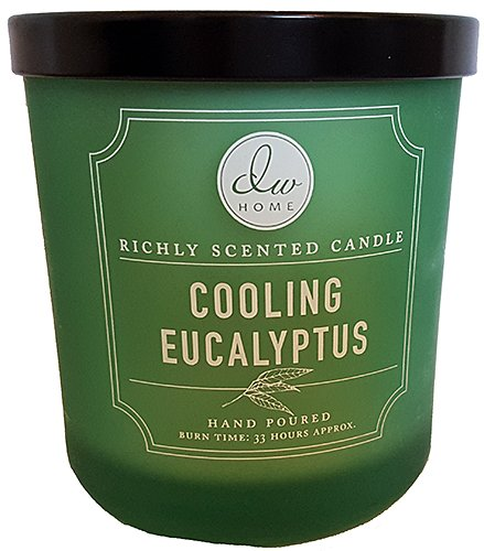 DW Home Decoware Richly Scented Candle --- Cooling Eucalyptus Medium Single wick 9.69 oz