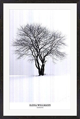 Amazon.com: Silhouette by Ilona Wellmann Laminated Art Print, 24 x ...
