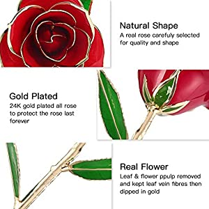 YINXN 24k Gold Rose, Red Gold Plated Rose 24k Gold Dipped Rose Everlasting Long Stem Real Rose with Exquisite Holder,Romantic Gift for Valentine's Day, Anniversary, Birthday and Mother's Day (Red) 4