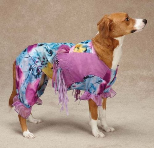 Casual Canine Hippie Hounds Costume, X-Small -