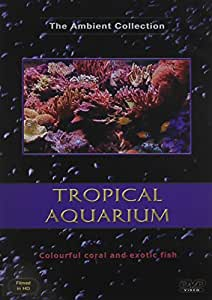 Aquarium DVD - with Scenes of Tropical Fishes in Fish Tanks with Relaxing Music