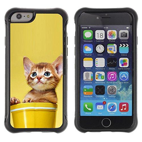 STPlus Gato en una caja Animal Carcasa Funda de Caucho Blando A Prueba de Choques Para Apple iPhone 6 Plus / 6S Plus #23