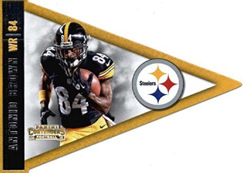 Pittsburgh Steelers Brown Football Case - 6