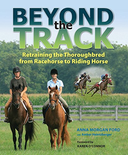 Beyond the Track: Retraining the Thoroughbred from Racecourse to Riding Horse by Trafalgar Square Books