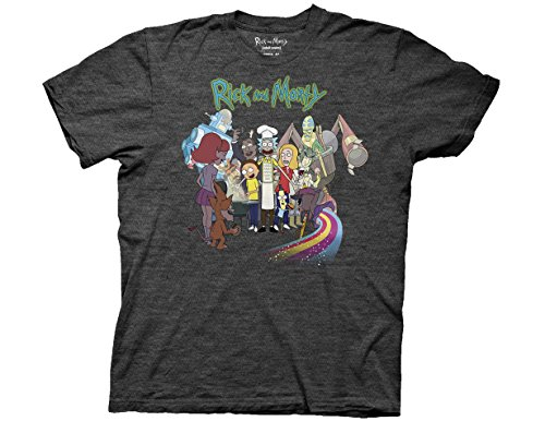 ripple-junction-rick-and-morty-bbq-group-season-2-dvd-art-adult-t-shirt-small-heather-charcoal