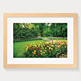 Best Better Homes Better Homes and Gardens Collage Picture Frames - HEI New Style Flower Country Garden With Tulips Review
