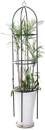 Gardening Stand Flower Display Climbing Plant Rack Vine Holder Support Frame