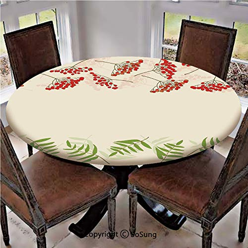 Elastic Edged Polyester Fitted Table Cover,Graphic Border Design Berries Mountain Ashes Botanical Nature Themed Decorative,Fits up to 36