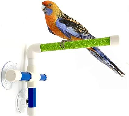 Bird Parrot Standing Platform Room Cleaning Bath Shower Rack Suction Pet Toy US