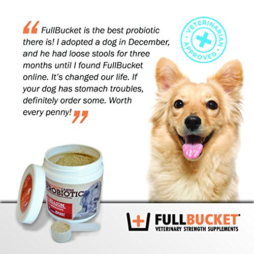 FullBucket Daily Dog Probiotic Probiotics