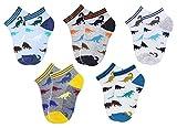 CHUNG Little Boys Thin Half-Mesh Low Cut Socks Summer No Show 5 Pack, Dinosaur 01, 4-6Y