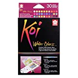 Office Products : Sakura XNCW-30N Koi Field 30 Assorted Watercolors with Brush Sketch Set