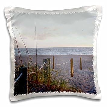 Amazon.com: Susans Zoo Crew playa – Pasarela playa de ...
