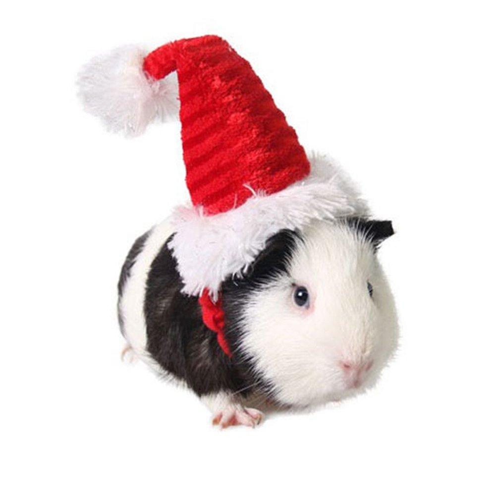 Hamster Hut Ratte Hut modische Katze Weihnachten Hut fü r kleine Haustier Santa Hut Zaote