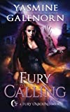 Fury Calling (Fury Unbound) (Volume 4)
