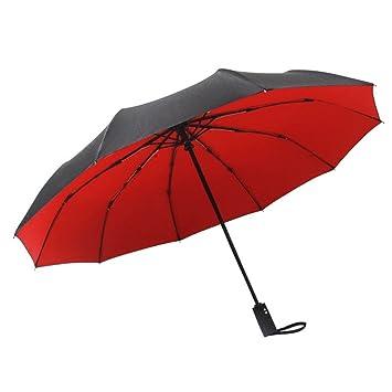 ZHDC® Paraguas, Doble capa Doblez automático Refuerzo Resistencia al viento Comercio Doble mujer para