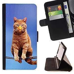 Momo Phone Case / Flip Funda de Cuero Case Cover - Gato Pájaro Sentado Branch Ginge Amarillo Pico - Sony Xperia Z3 D6603