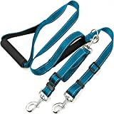 Taglory Dual Dog Leash for Two Dogs/Basic 6 Ft Dog Training Walking Leash with 2 Padded Handles/Double Dog Leash for 2 Dogs/Blue-Violet