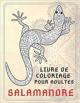 Salamandre Livre De Coloriage Pour Adultes Amazon Fr Desrochers Sarah Livres