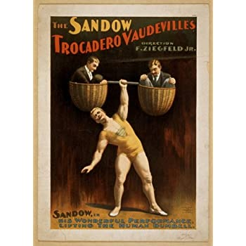Vintage Circus Carnival Poster Flying Trapeze Art Print Picture A3 A4