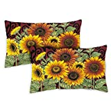 Toland Home Garden 731215 Sunflower Medley 2-Pack 12x 19 Inch, Indoor/Outdoor Pillow with Insert