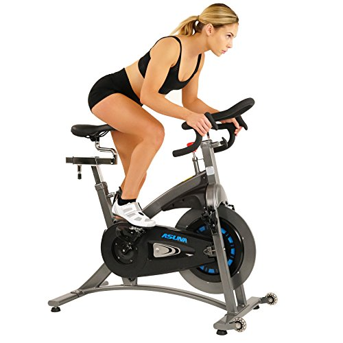 Sunny Health & Fitness Asuna 5100 Magnetic Belt Drive Commercial Indoor Cycling Bike Silver