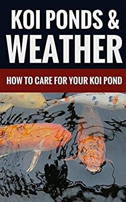 Koi Ponds & Weather - How To Care For Your Koi Pond