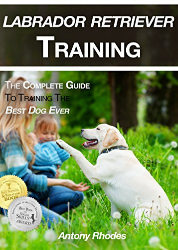Labrador Retriever Training: The Complete Guide To Training the Best Dog Ever by [Rhodes, Antony]
