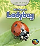 Life Story of a Ladybug (Animal Life Stories)