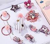 Royarebar Diverse Styles Hair Decorations Girls Hair Accessories Cartoon Hair Clips Child Barrettes Princess Hairpins Set (Pink+Gray)